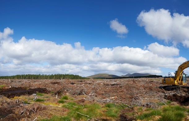 Forestry-Works-main-610x391